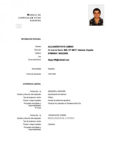 Curriculum Vitae Modelo Basico Chileno Admin Job Resume Format