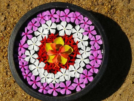 Simple Water Rangoli/Flower Decoration