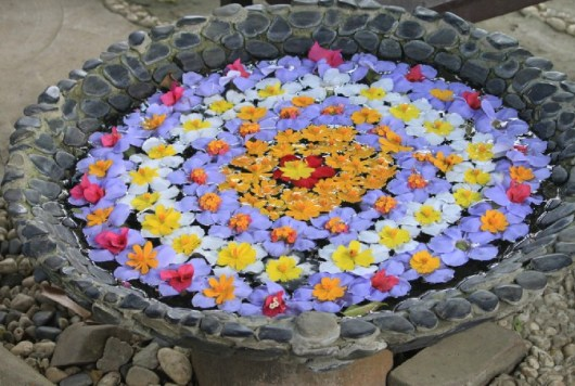 Floating Flower Arrangement-Rangoli Style
