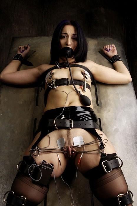 Dirty Bondage Brunette Whore 15134