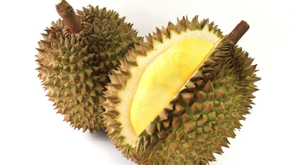Panic as pungent durian smell is mistaken for gas leak in