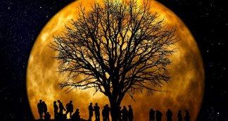 Full Harvest Moon Lights up Sky Above Tehran – Video