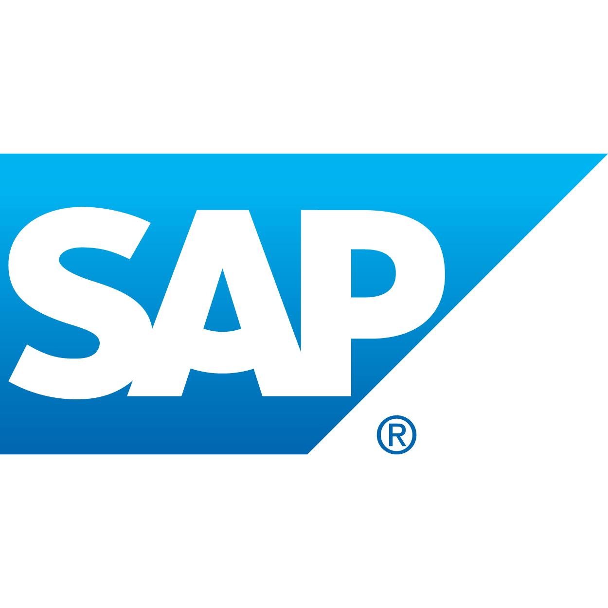 hight resolution of sap scm