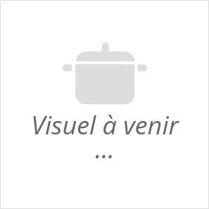magimix juice expert 3 extracteur centrifugeuse multifonction noir