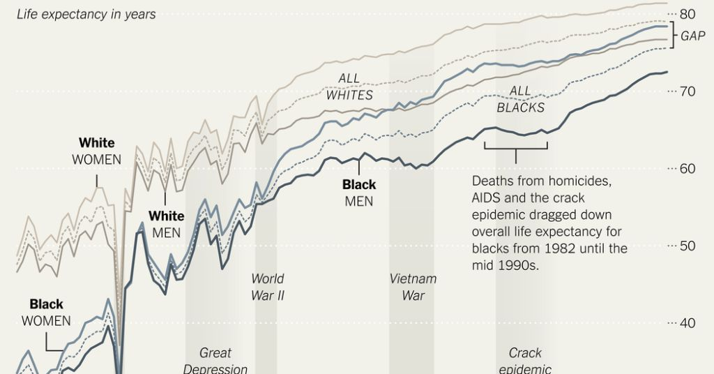 Blacks See Gains in Life Expectancy