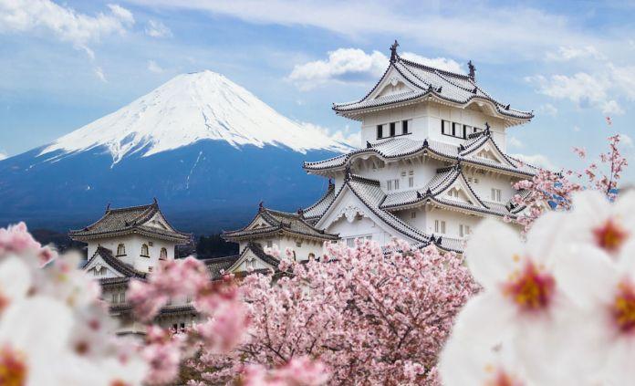 2020 Japan Travel Guide - Matador