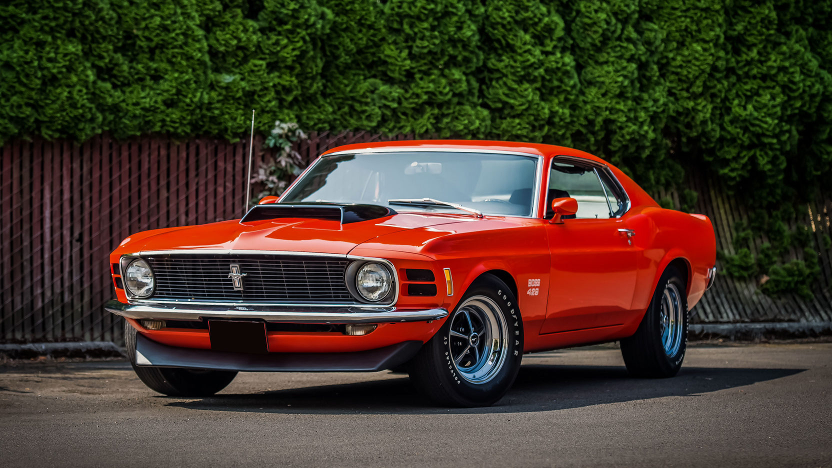 Black Mustang Boss 1970