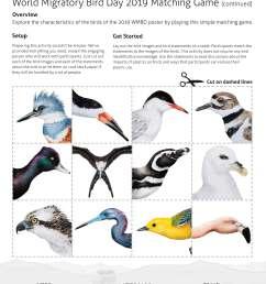 migratory bird diagram wiring diagrams sapp migratory bird diagram [ 3808 x 4928 Pixel ]