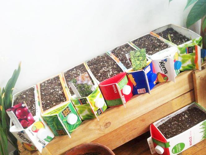 Recycler des briques de jus de fruits  Momesnet
