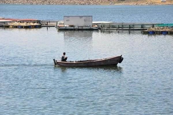 Denizi olmayan Manisa'dan dünyaya balık ihracı - 5