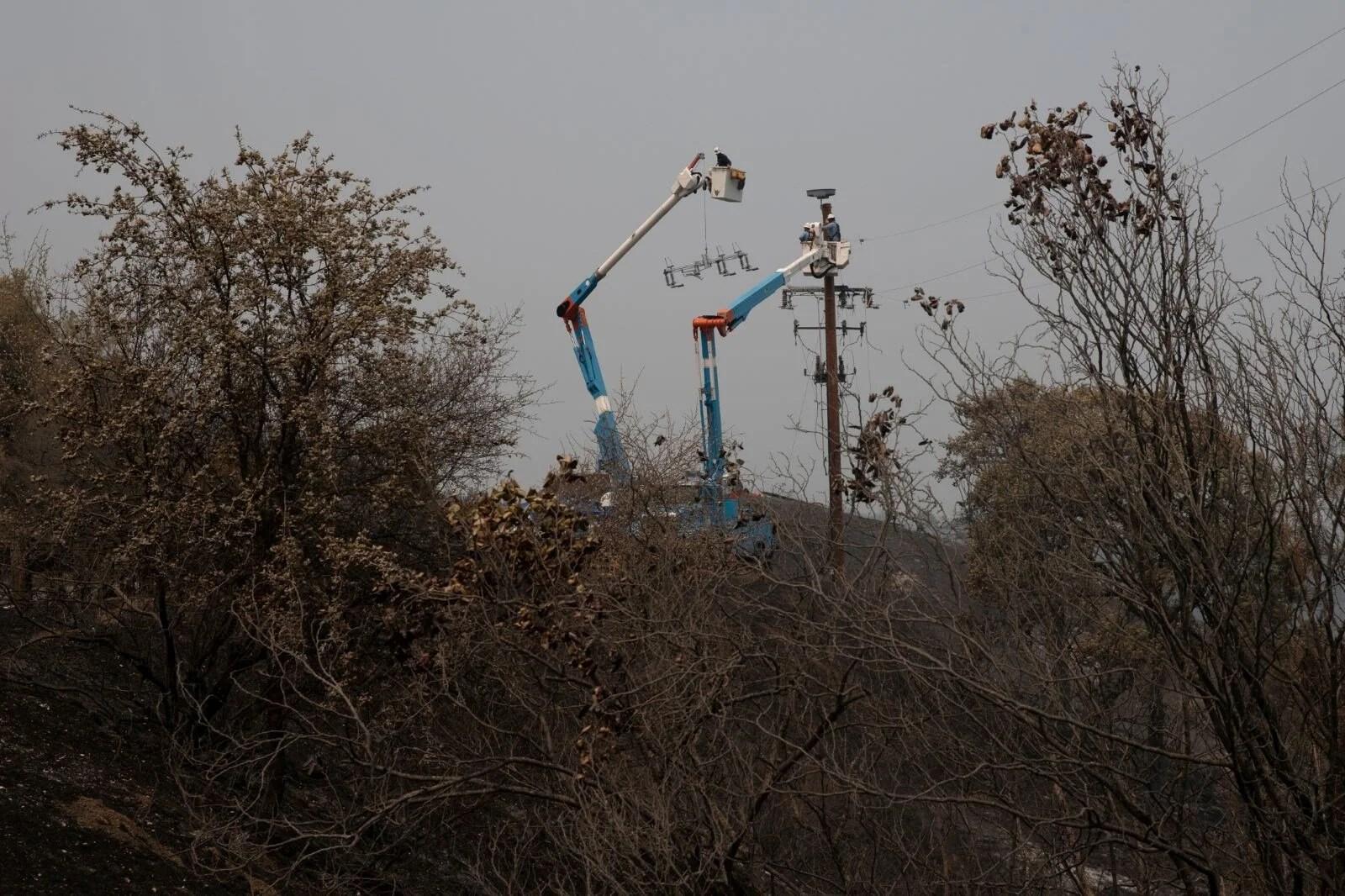 California'da 8 bin kilometrekare alan yandı, rekor kırıldı - 16