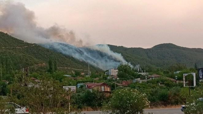Antalya, Adana, Mersin, Muğla ve Osmaniye'de orman yangınları 23
