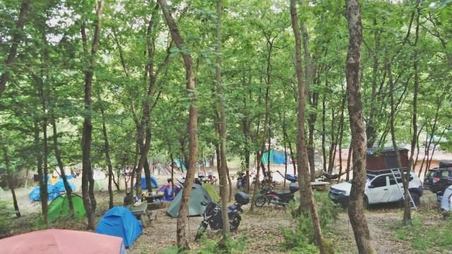 İstanbul çevresindeki en iyi kamp alanları - 15