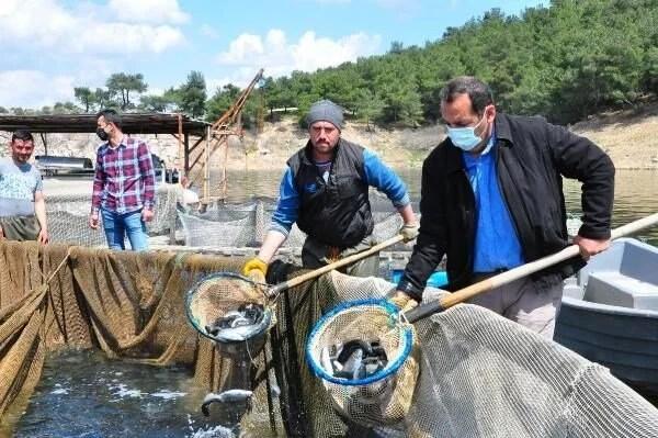 Denizi olmayan Manisa'dan dünyaya balık ihracı - 7