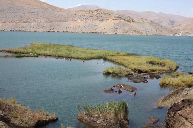 Baraj gölündeki yüzen adalar sabitlenecek - 1