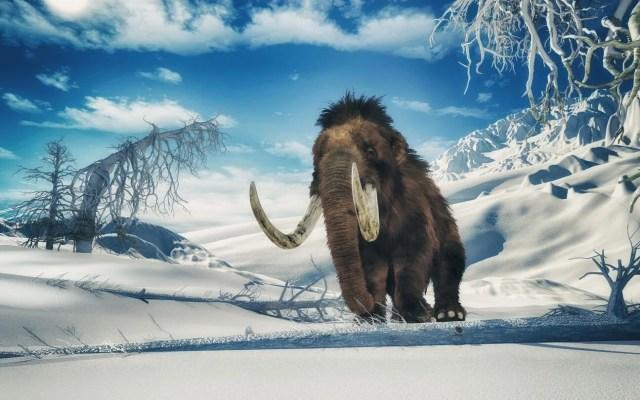 10 bin yıl önce yok olan yünlü mamutlar yeniden doğacak - 11