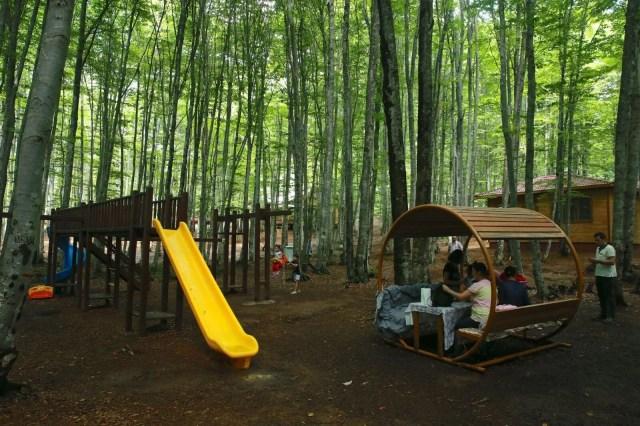 eriklitepe tabiat parkı, kocaeli tabiat parkları, kocaeli milli parkları, eriklitepe bungalovları