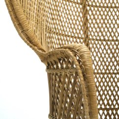 Large Wicker Chair Steel Weight Peacock 1970s For Sale At Pamono