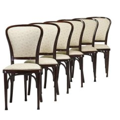 Set Of Six Dining Chairs For Sale Childs Table And By Gustav Siegel Thonet 1910 6