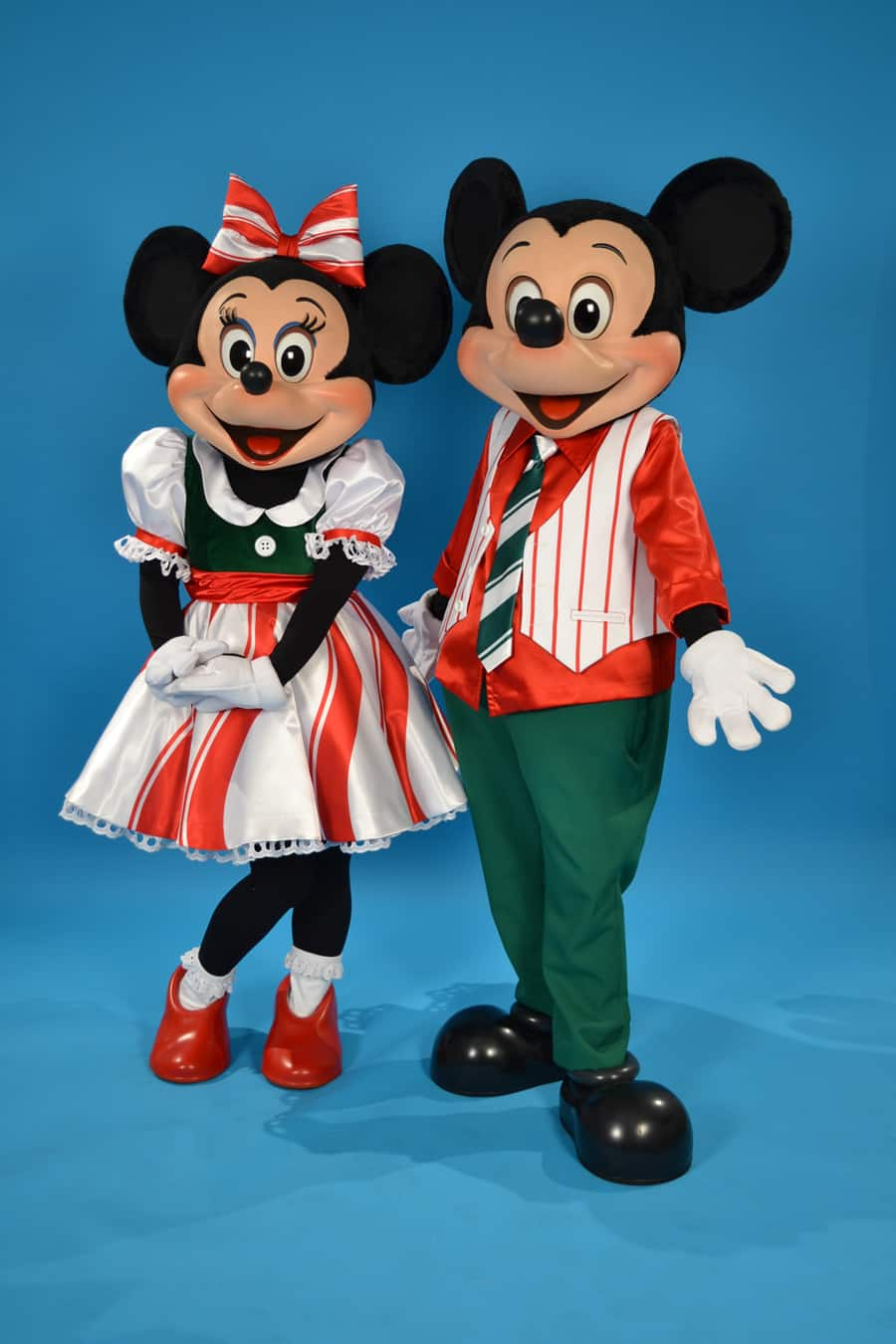 Mickey Minnie Mouse Family Costumes