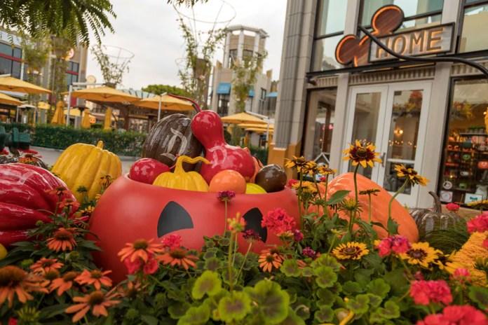 Halloween planters at the Downtown Disney District at Disneyland Resort