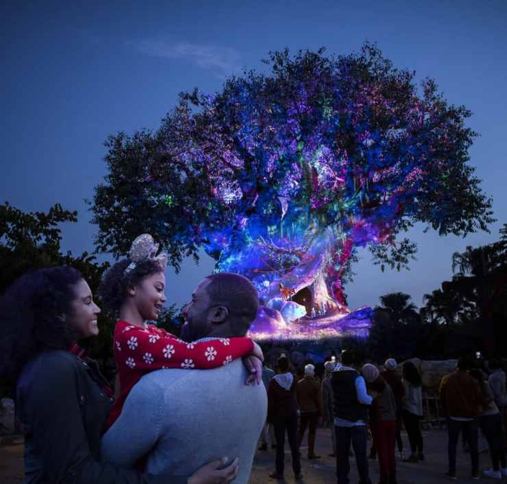 Tree of Life Awakening during the holidays at Disney's Animal Kingdom