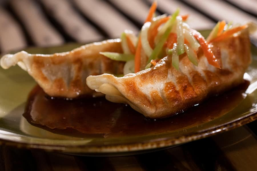 Offerings from China Marketplace for the 2020 Epcot Taste of International Food & Wine Festival - Chicken Dumplings with Chinese Slaw
