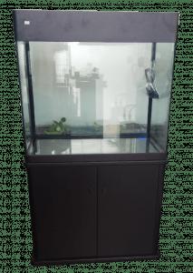 Cara Membersihkan Kaca Aquarium Yang Sudah Buram : membersihkan, aquarium, sudah, buram, Aquarium,, Membersihkan, Akuarium, Sudah, Buram, Gampang, Online