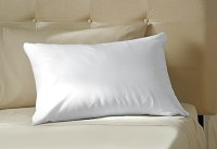 Temperature Regulating Pillow @ Sharper Image