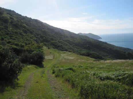 Trail toward Starlight Beach