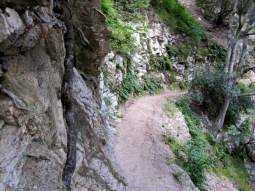 Lower Gabrielino Trail