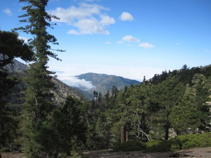 Looking down the valley from the Mt Baldy ski slopes