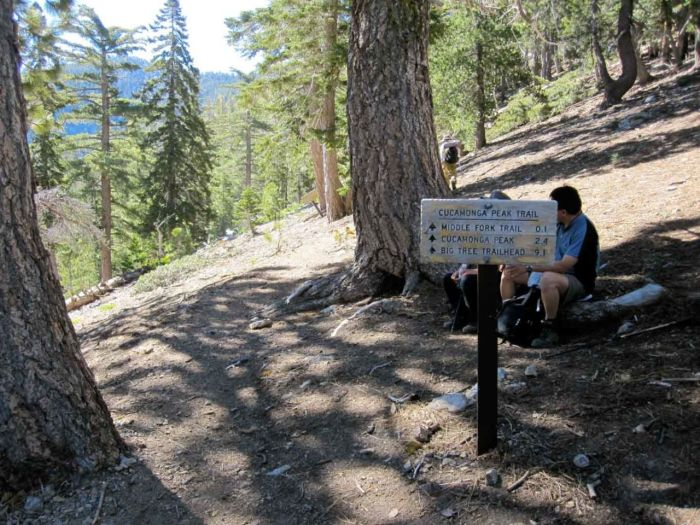Saddle Junction at the Top of Icehouse Canyon