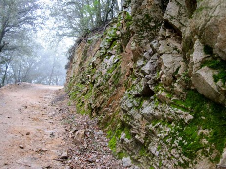 Moss covered rock along the gravel road