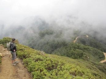 Manzanita covered hills