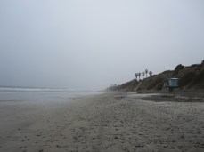 Foggy day at the beach