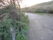Nature Trail Marker