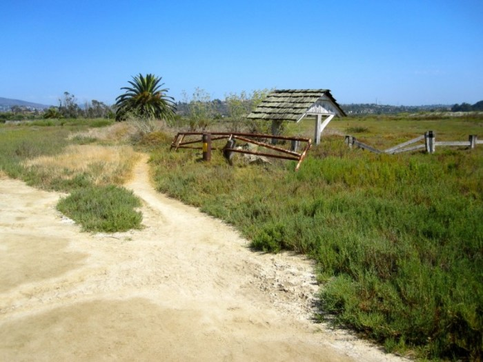The end of the Batiquitos Lagoon trail.