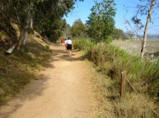 The Batiquitos Lagoon trail is wide and well maintained