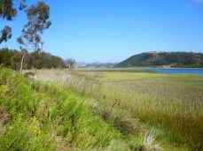 The natural beauty of the Batiquitos Lagoon shines year round