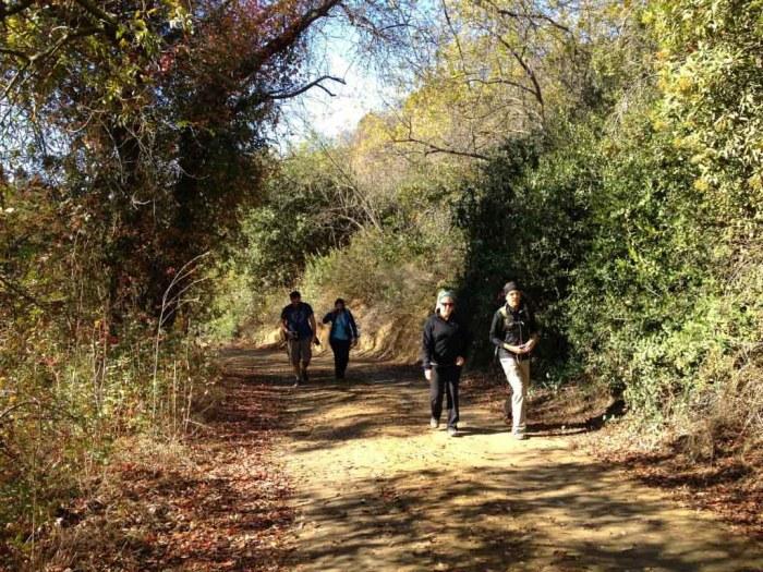 Bloggers, hiking