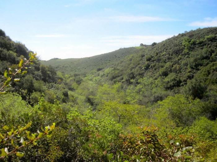 View out over Escondido Canyon