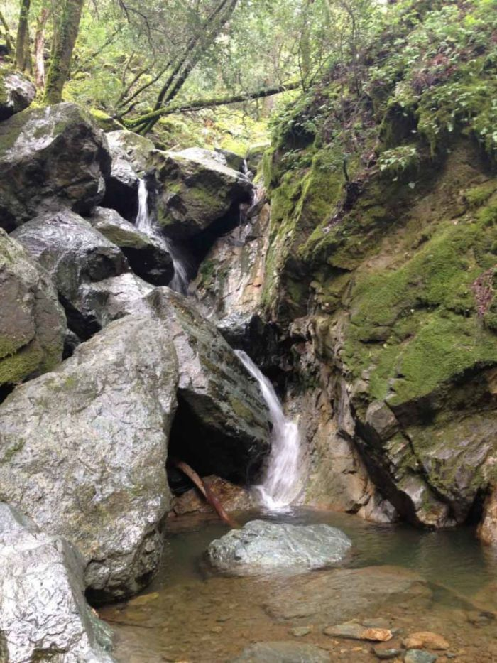 The Sonoma Creek falls