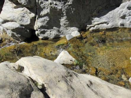 Blackstar Creek