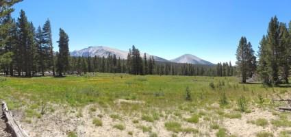 Crabtree Meadow