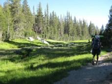 Hari on the trail