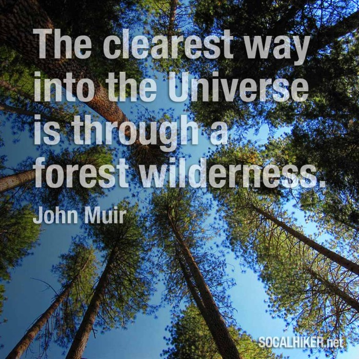 Muir Monday: The Clearest Way Into the Universe