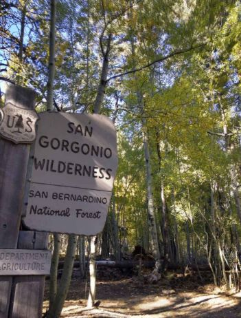 Entering the San Gorgonio Wildnerness