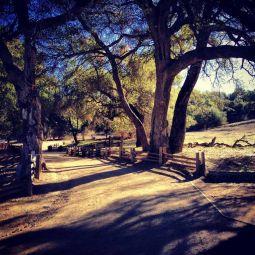 Trippet Ranch Trailhead