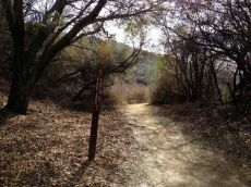 Trail Back to Trippet Ranch